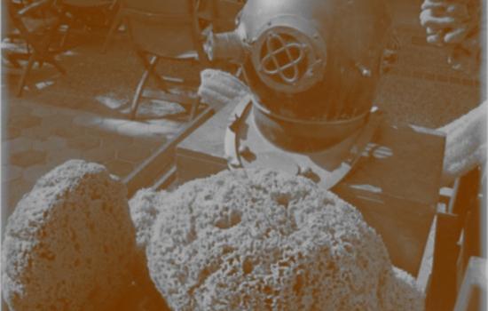 Μαθαίνω για τους Σφουγγαράδες της Καλύμνου – Βίντεο
