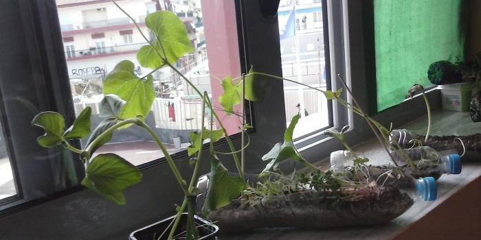 Oι μικροί κηπουροί